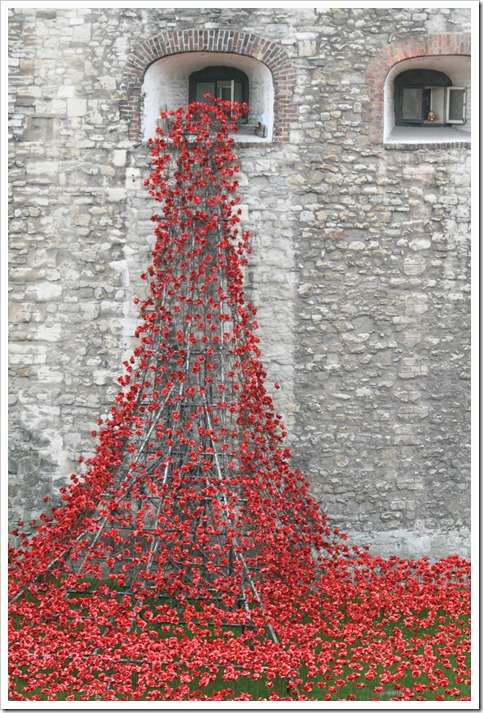 Poppies Tower of London weeping window